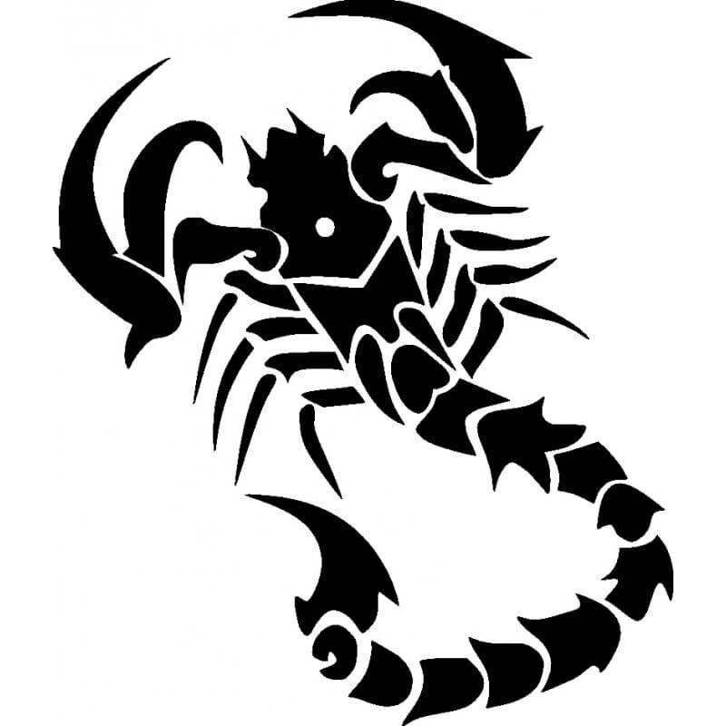 буду картинки черно белые тату скорпиона более